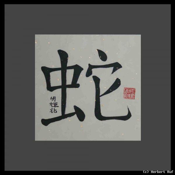 chinesische tierzeichen 6 she schlange von herbert ruf at k nstler kunst und. Black Bedroom Furniture Sets. Home Design Ideas
